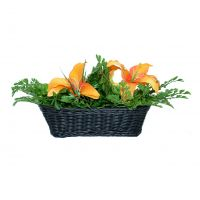4k Faux Plant in Wicker Basket